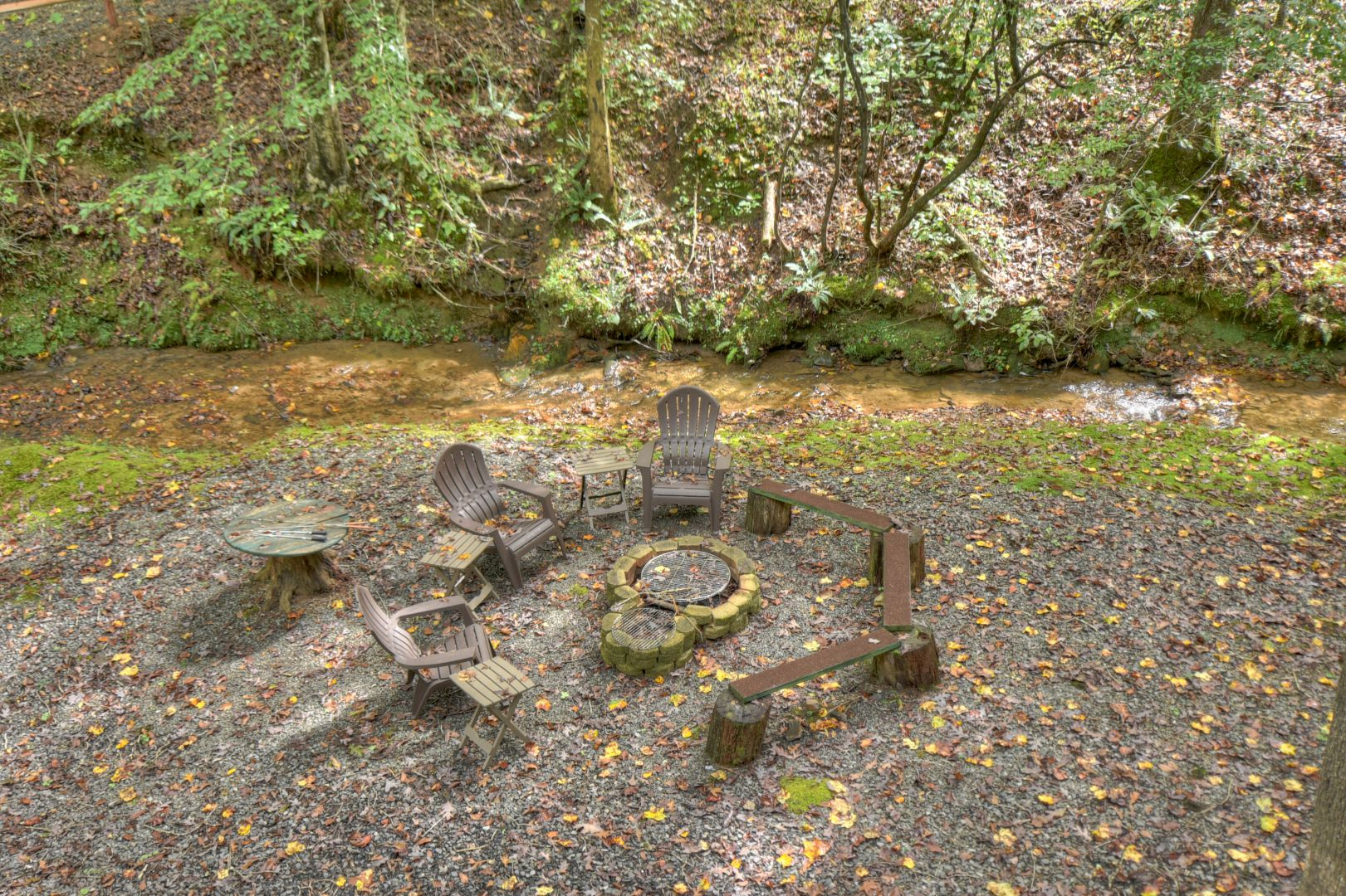 Fern Gully Cabin Rental