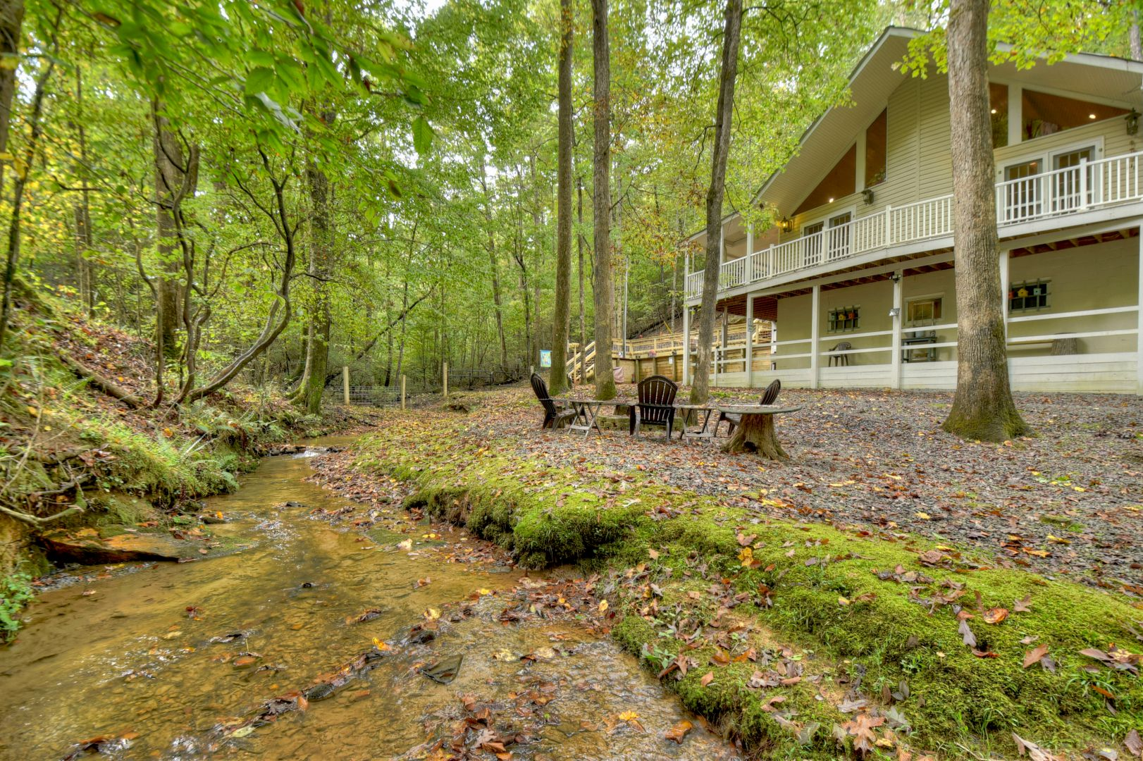Fern Gully Rental Cabin