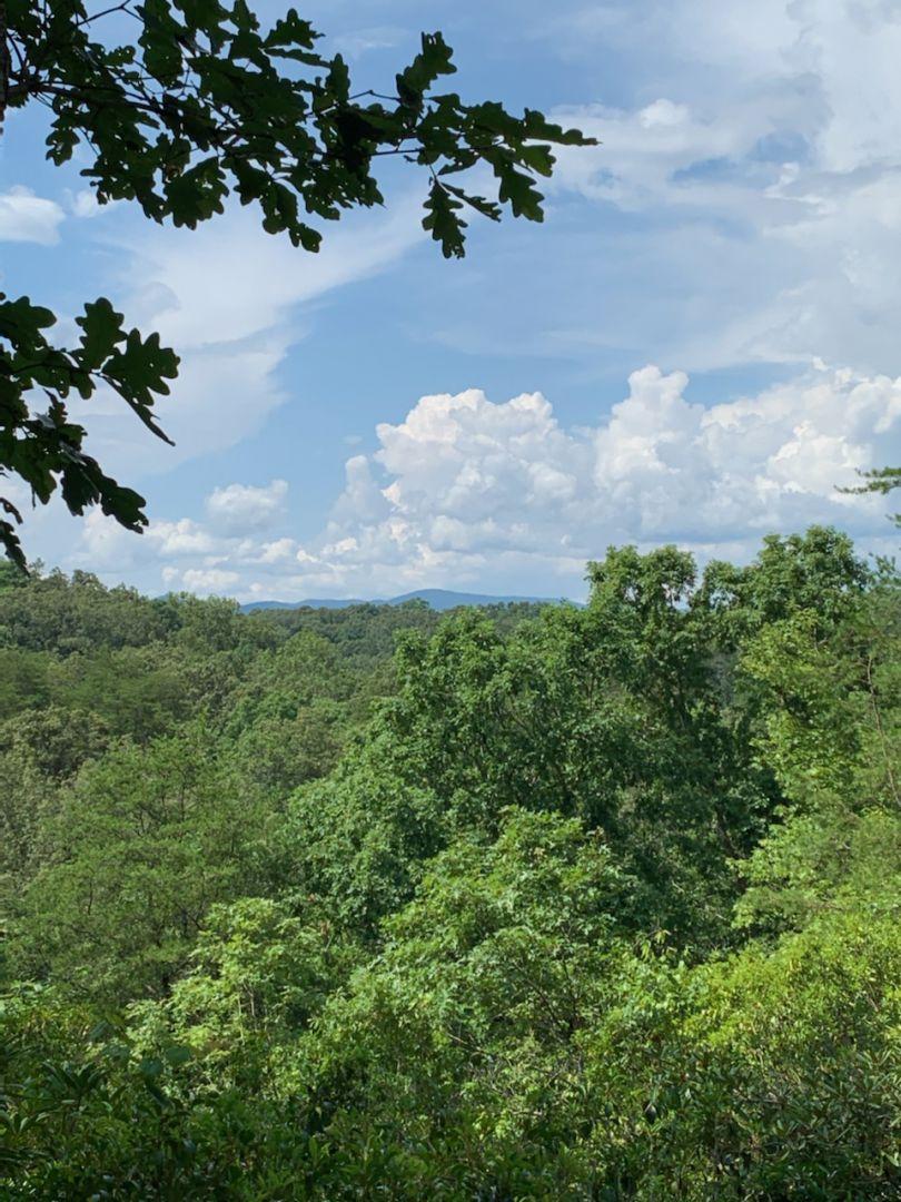 Blueberry Hill Cabin Rental